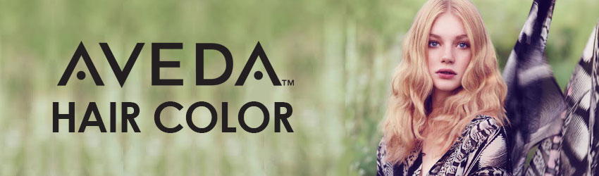 aveda haircut prices is hair color from a professional worth the price salon 3323